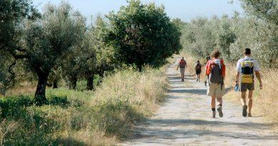Alla scoperta dei 14 Cammini e Vie dei Pellegrini
