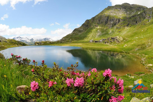 Estate in Valchiavenna tra trekking, gusto e natura