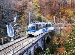 L'autunno dal finestrino: torna la magia del Treno del Foliage